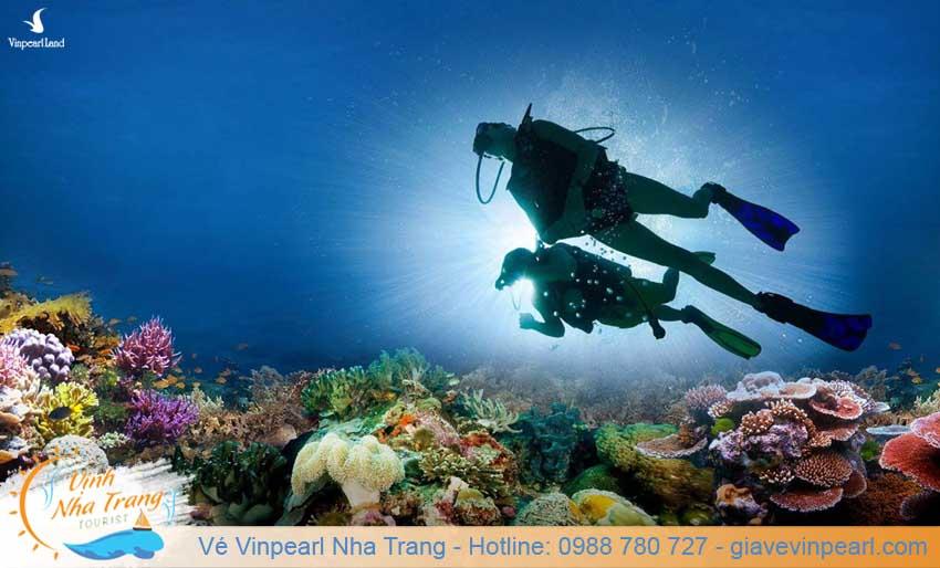 tour lan bien nha trang diving-2