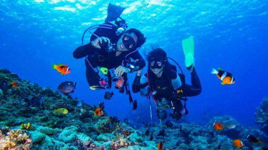 tour lan bien nha trang diving-ava