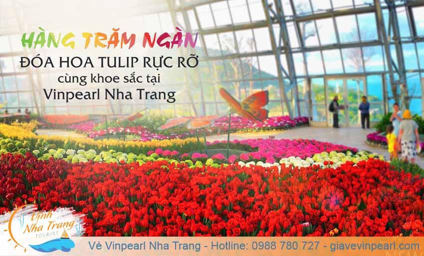 festive wonderland le hoi hoa tulip vinpearl nha trang